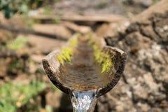 tubo di bambù Fotografie Stock