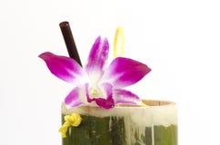 Tubo di bambù per le bevande Fotografia Stock