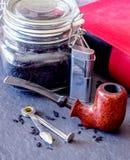 Tubo di rovo di Birdseye sull'ardesia Fotografia Stock