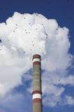 Tubo ed uccelli del fumo Fotografia Stock Libera da Diritti