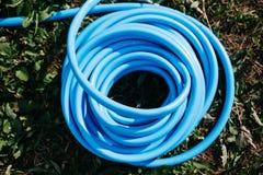 tubo flessibile blu torto per l'innaffiatura dell'erba sulla vista superiore del prato inglese fotografia stock libera da diritti