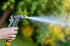 Tubo flessibile di giardino della tenuta della mano con lo spruzzo d'acqua Immagini Stock