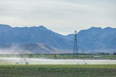 Tubo lungo dell'impianto di irrigazione Immagine Stock Libera da Diritti