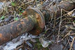 Tubo oxidado del metal en el primer del bosque Imágenes de archivo libres de regalías