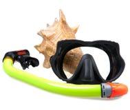 Tubo para el salto (tubo respirador), el shell del mar y la máscara grandes Imagenes de archivo