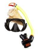 Tubo para el salto (tubo respirador), el shell del mar y la máscara grandes Imágenes de archivo libres de regalías