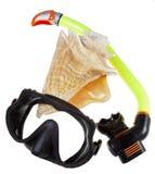 Tubo para el salto (tubo respirador), el shell del mar y la máscara grandes Fotografía de archivo libre de regalías