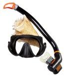 Tubo para el salto (tubo respirador), el shell del mar y la máscara grandes Imagen de archivo