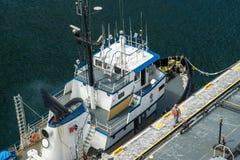 Tuboat d'Alasca Immagine Stock