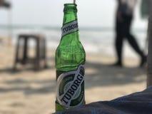 Tuborg-Bier durch den Strand Stockbild