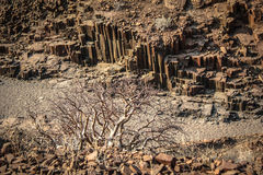 Tubos de órgano, Namibia Foto de archivo libre de regalías