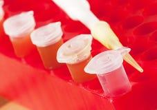 Tubos de ensaio com produtos químicos coloridos diferentes Fotografia de Stock