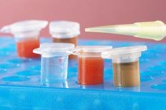 Tubos de ensaio com produtos químicos coloridos diferentes Foto de Stock Royalty Free