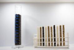 Tubos de ensaio com sementes de cereal Imagem de Stock Royalty Free