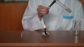 Tubos de ensaio de aquecimento com líquido em uma espírito-lâmpada filme