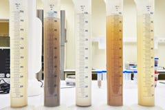 Tubos de ensaio de medição com o laboratório líquido diferente do ib Imagem de Stock