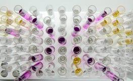 Tubos de ensayo con los especímenes líquidos coloridos Fotos de archivo