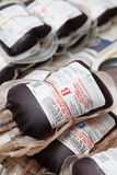 Tubos de la sangre de la muestra en lab?ratory Imagenes de archivo