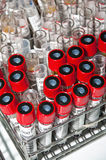 Tubos de prueba en el estante inoxidable Imagen de archivo libre de regalías