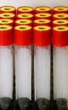 Tubos de prueba (reactivo) Imágenes de archivo libres de regalías