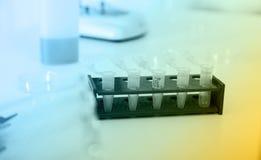 Tubos micro con las muestras biológicas en laboratorio Imágenes de archivo libres de regalías