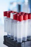 Tubos no laboratório Foto de Stock Royalty Free