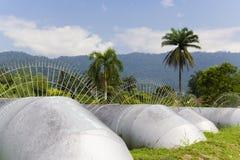 Tubos públicos del abastecimiento de agua Imágenes de archivo libres de regalías