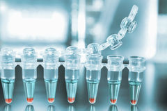 Tubos para la amplificación de la DNA con las muestras Fotos de archivo
