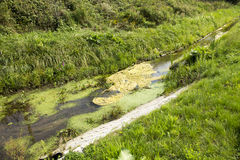 Tubulação da água de esgoto Imagens de Stock Royalty Free