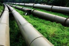 Tubulação de petróleo e de gás Fotos de Stock Royalty Free