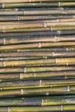 Tubulações de bambu Fotos de Stock Royalty Free