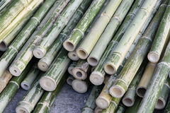 Tubulações de bambu Imagens de Stock Royalty Free