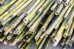 Tubulações de bambu Foto de Stock