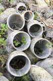 Tubulações do asbesto abandonadas Foto de Stock