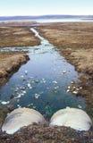 Tubulações Waste que poluem o mar Fotografia de Stock Royalty Free