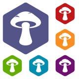 Tubular mushroom icons set hexagon. Isolated vector illustration Stock Image