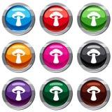 Tubular mushroom set 9 collection. Tubular mushroom set icon isolated on white. 9 icon collection vector illustration Royalty Free Stock Image