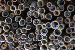 Tubuli dell'oceano Fotografia Stock Libera da Diritti