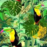 Tucán en diseño inconsútil del vector del modelo de la selva tropical verde de Amazonia libre illustration