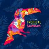 Tucán tropical del verano Imagen de archivo libre de regalías