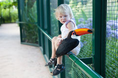 Tucan and a girl. A tucan and a girl - focus in tucan stock photography
