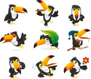 Tucan set. Fun Toucan  cartoon illustrations Stock Photo