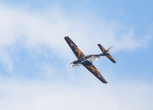 Tucano Foto de Stock Royalty Free