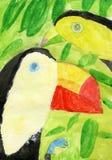 Tucano fågelpar Arkivbilder