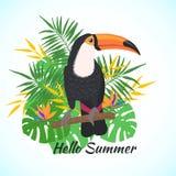 Tucano sveglio dell'uccello su un fondo floreale illustrazione di stock