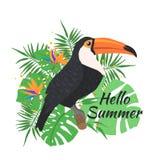 Tucano sveglio dell'uccello su un fondo floreale royalty illustrazione gratis