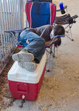Tuckered Out. A farm family member naps alongside a livestock bin after a long day of handling animals at the Wisconsin State Fair Royalty Free Stock Photos
