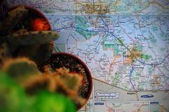 Tucson, Arizona. A cactus plant pictured with a map of Tucson, Arizona stock photos
