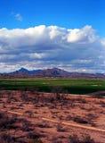 Tucson del oeste Arizona fotos de archivo