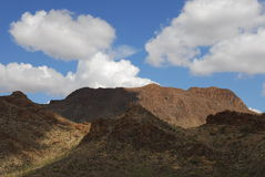 Tucson-Landschaft Stockbilder